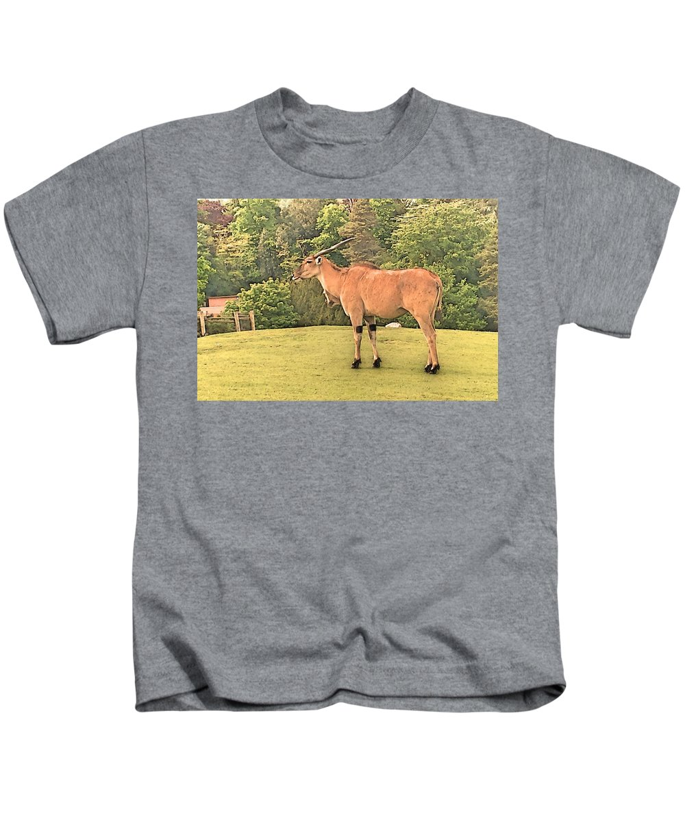 Eland Kids T-Shirt featuring the photograph Common Eland by Lisa Byrne