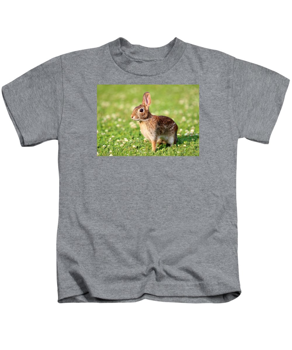 Cute Rabbits Kids T-Shirt featuring the photograph Cottontail by Brian Manfra