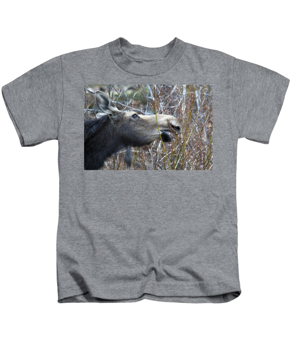 Moose Kids T-Shirt featuring the photograph Cow Moose Dining On Willow by Gary Beeler