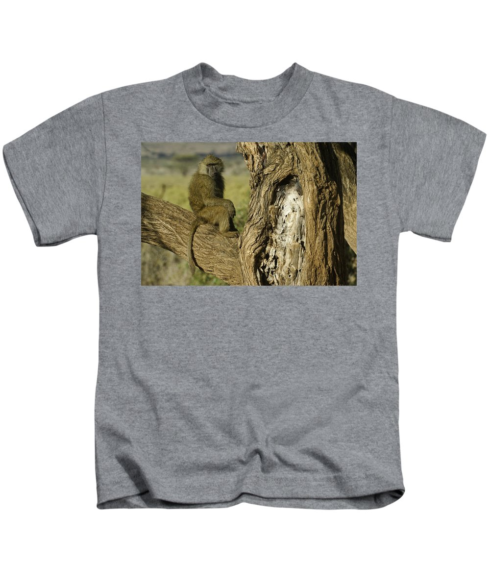 Africa Kids T-Shirt featuring the photograph Curious Baboon by Michele Burgess