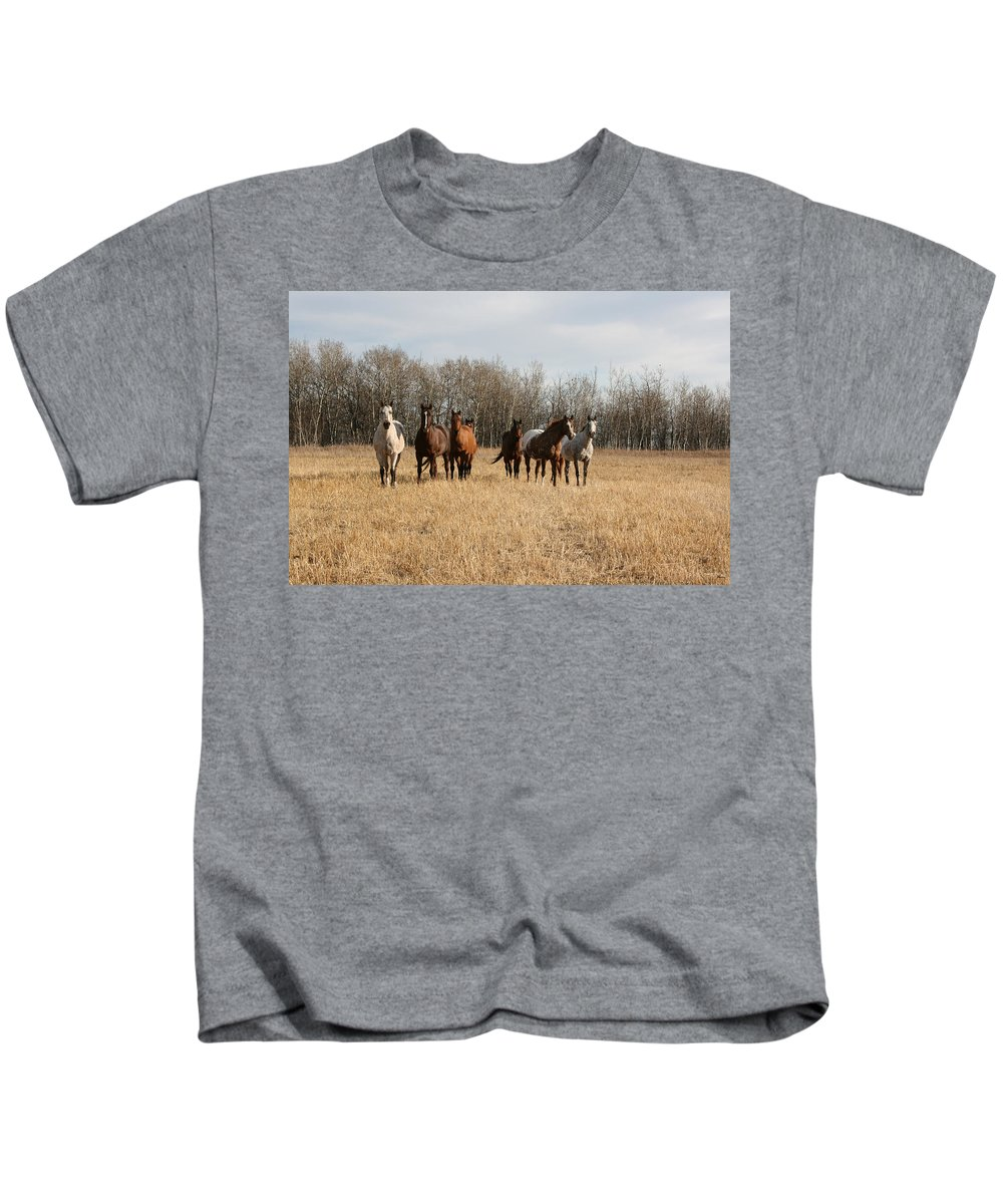 Horses Herd Animals Ranch Cowboy Appaloosa Quarter Horse Mares Pasture Field Grass Kids T-Shirt featuring the photograph Curious Horses by Andrea Lawrence