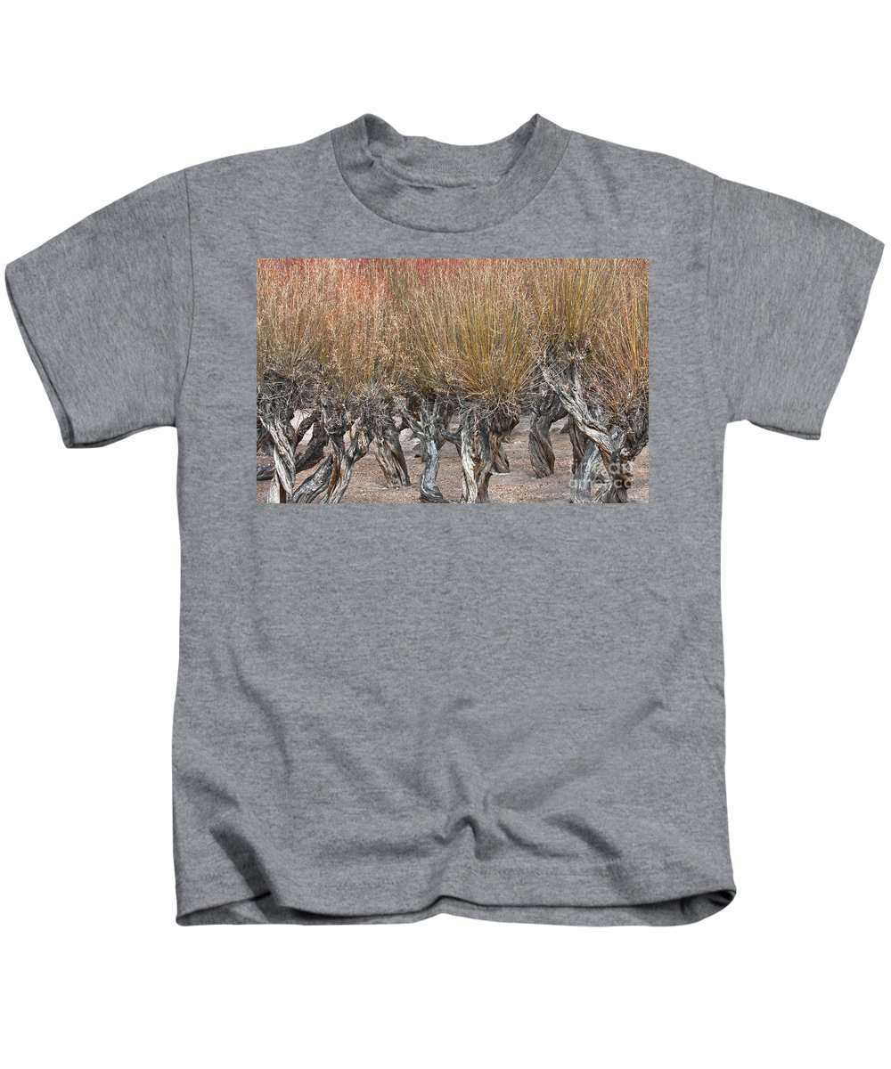 Dancing Trees Kids T-Shirt featuring the photograph Dancing Trees by Hitendra SINKAR