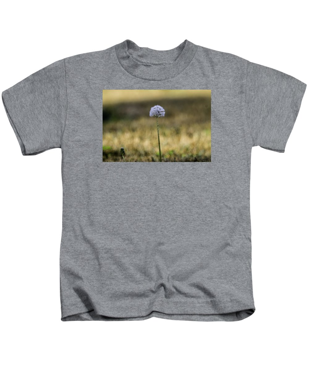 Dandelion Kids T-Shirt featuring the photograph Dandelion by Alice Mary Herden