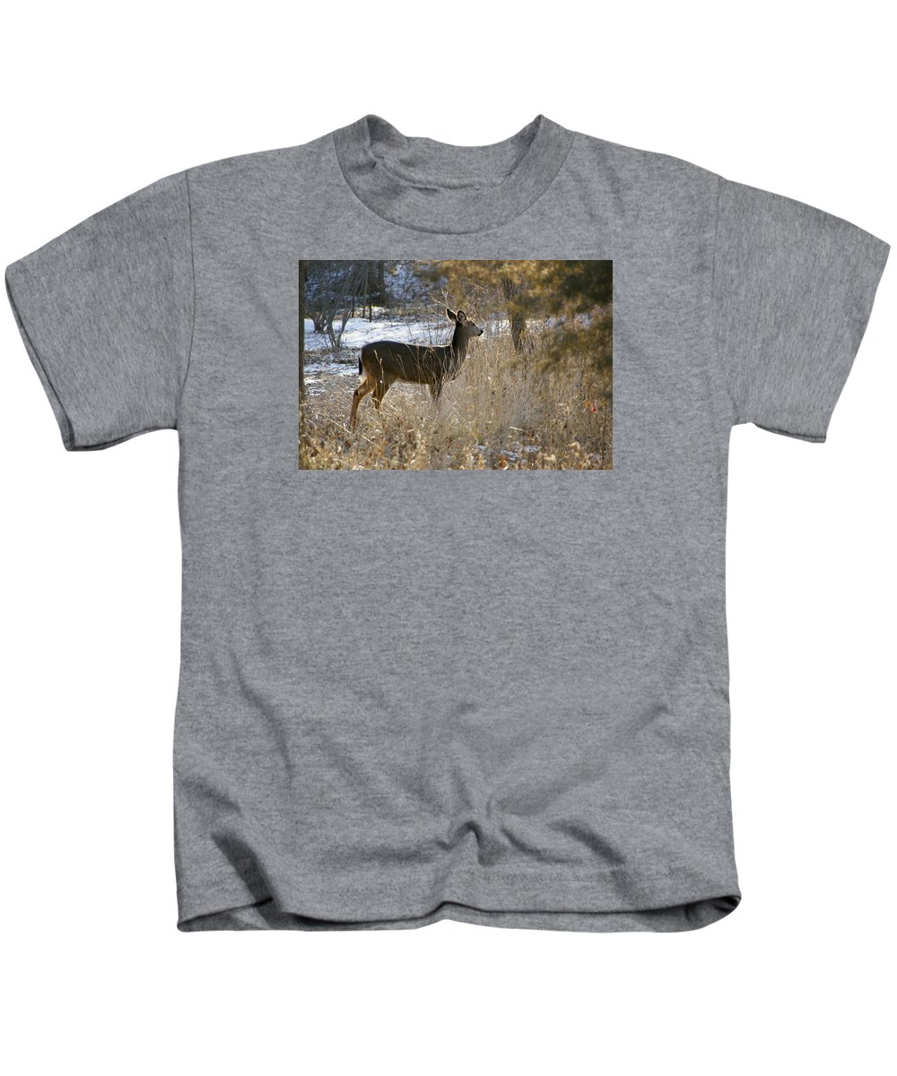 Deer Kids T-Shirt featuring the photograph Deer in Morning light by Toni Berry