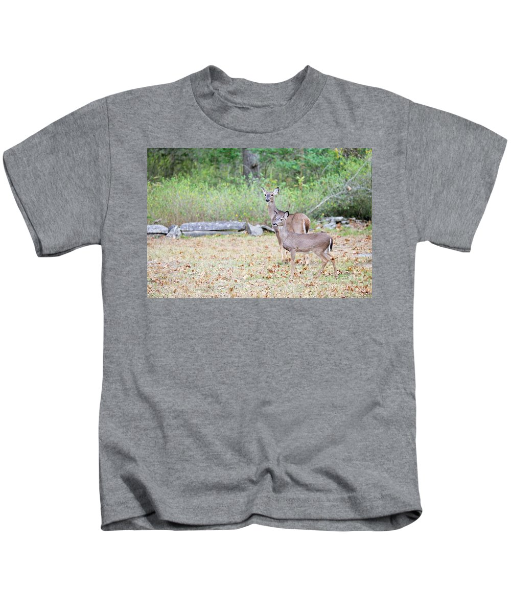 Kids T-Shirt featuring the photograph Deer46 by Jeff Downs