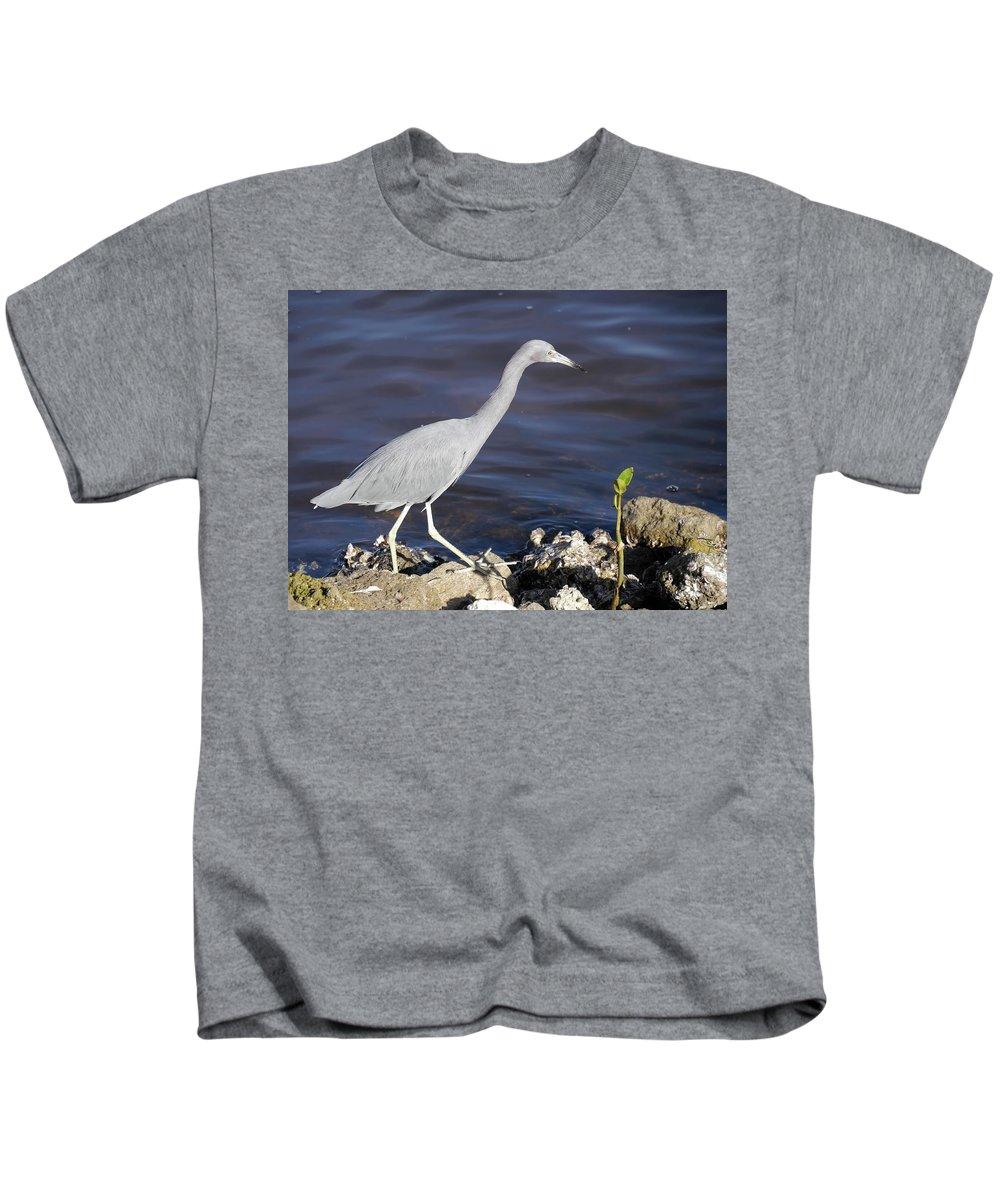 Sanibel Kids T-Shirt featuring the photograph Ding Darling Wildlife Refuge Vii by Tina Baxter