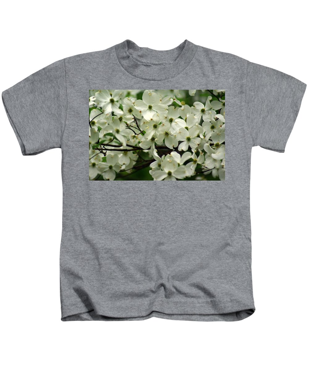 Dogwood Kids T-Shirt featuring the photograph Dogwoods by Marty Koch