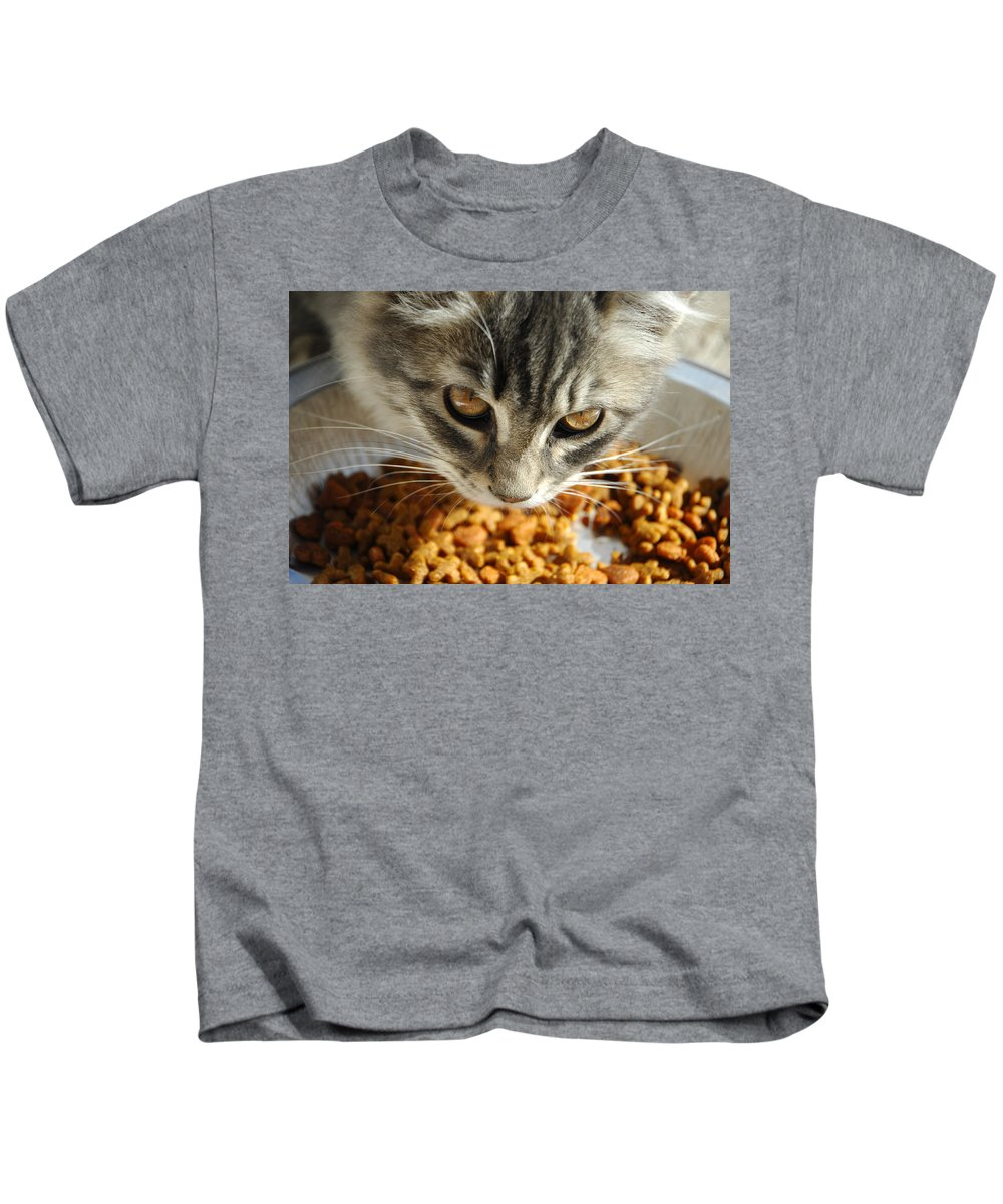Cat Kids T-Shirt featuring the photograph Don't Even Think About It by Donna Blackhall