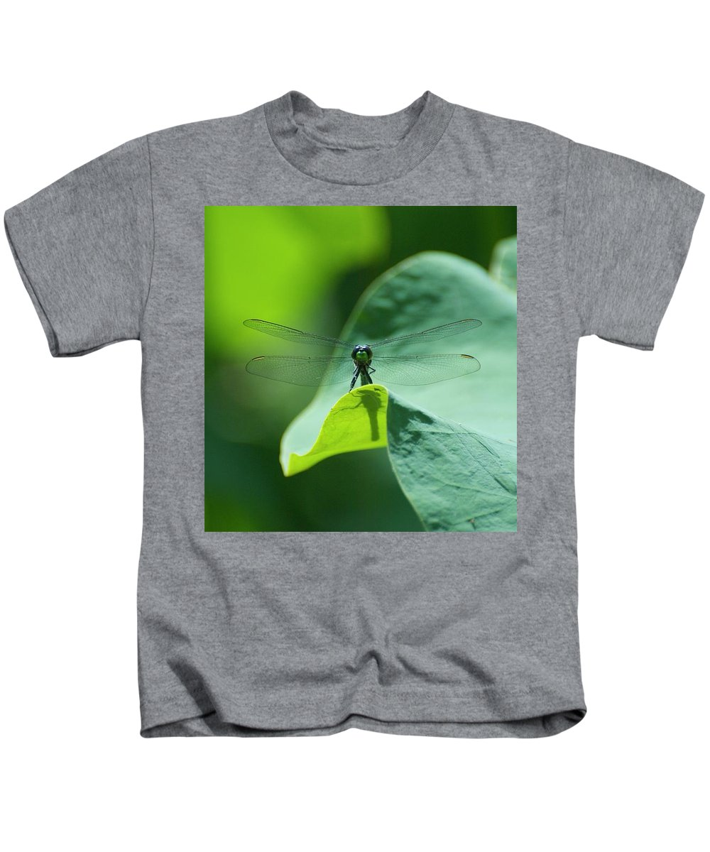 Dragonfly On Leaf Print Kids T-Shirt featuring the photograph Dragonfly On Leaf by Deborah M Rinaldi