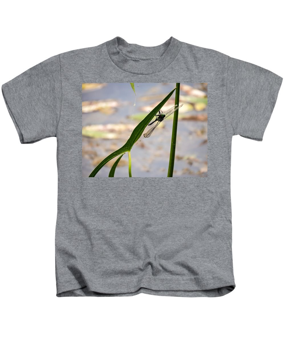 Dragonfly Resting Upside Down Kids T-Shirt featuring the photograph Dragonfly Resting Upside Down by Cynthia Woods