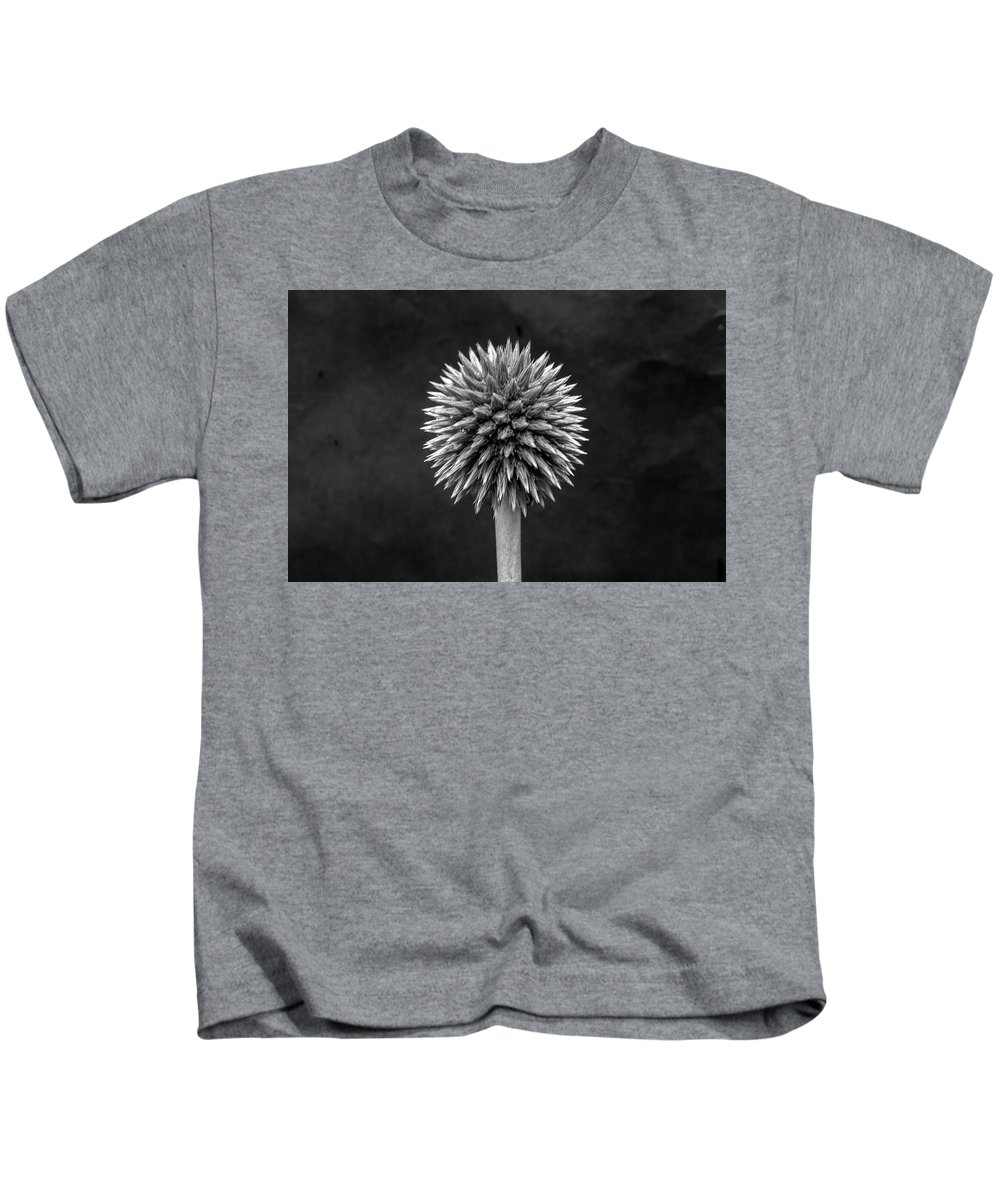 Flower Echinops Monochrome Black Background Minimalist Abstract Stem Stalk Horticulture Raindrops Structural Light Shade Kids T-Shirt featuring the photograph Echinops Monochrome by Jeff Townsend