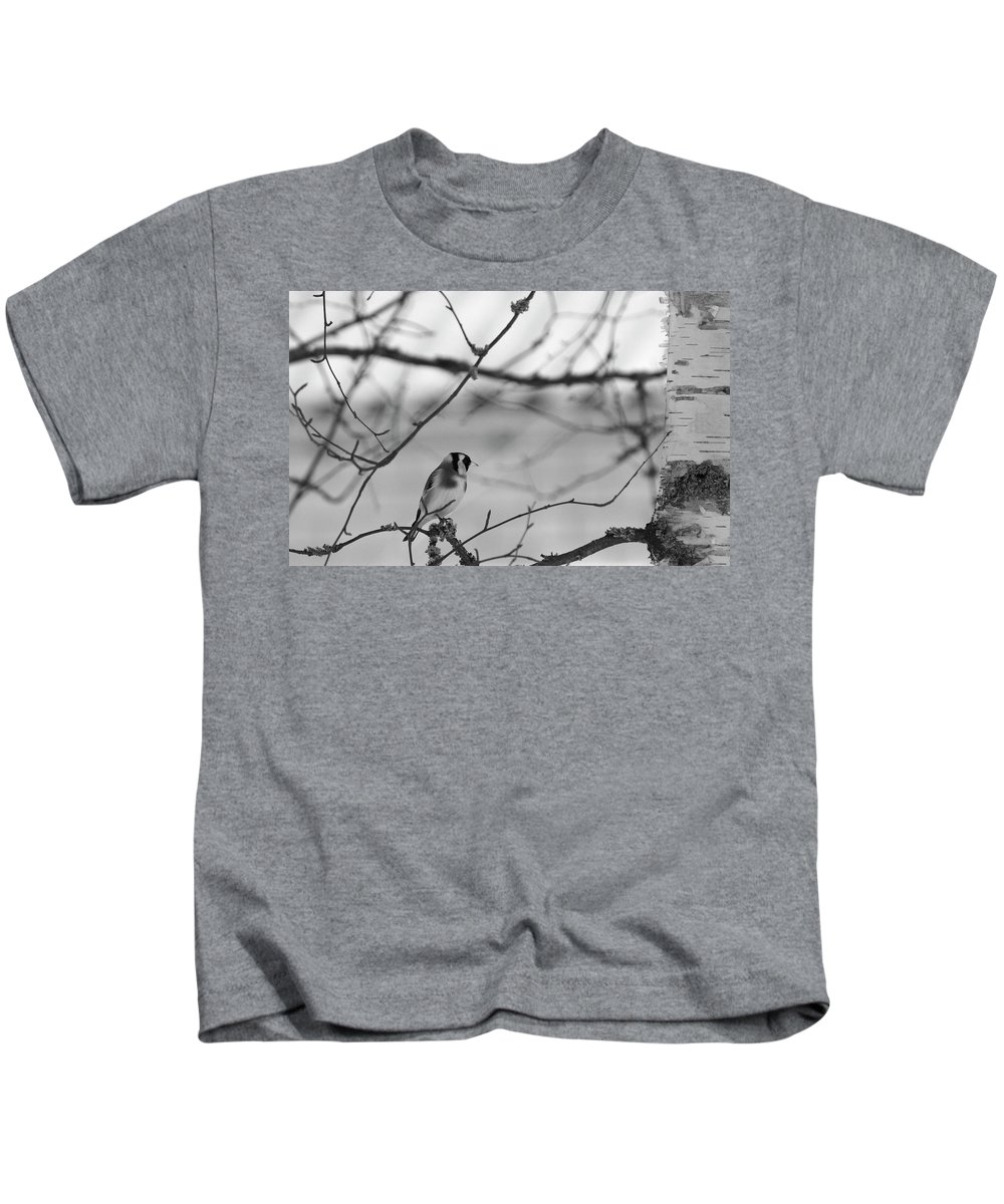 Lehtokukka Photography Kids T-Shirt featuring the photograph European Goldfinch 1 by Jouko Lehto