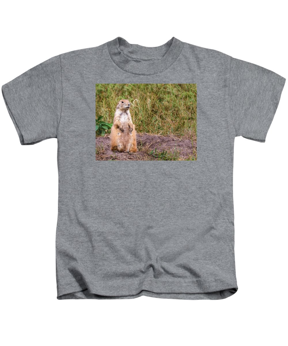 Prairie Kids T-Shirt featuring the photograph Ever Watchful by Jayme Spoolstra