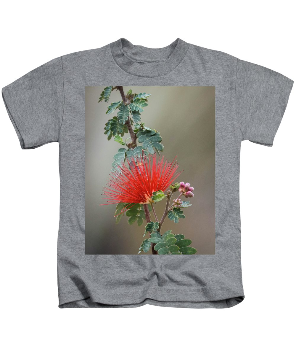 Fairy Kids T-Shirt featuring the photograph Fairy Duster-img_488917 by Rosemary Woods-Desert Rose Images
