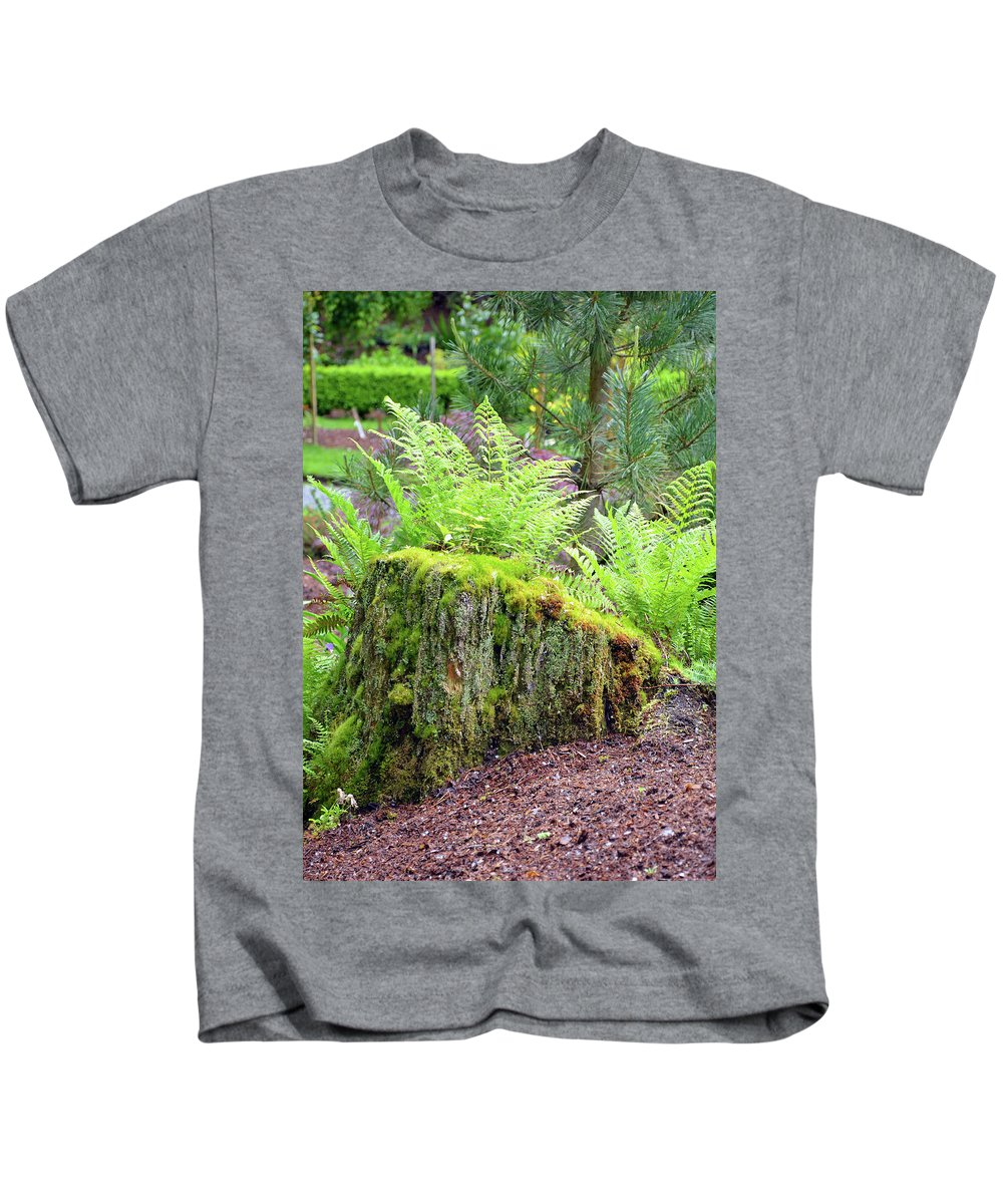Ferns Kids T-Shirt featuring the photograph Fern Garden by Perl Photography