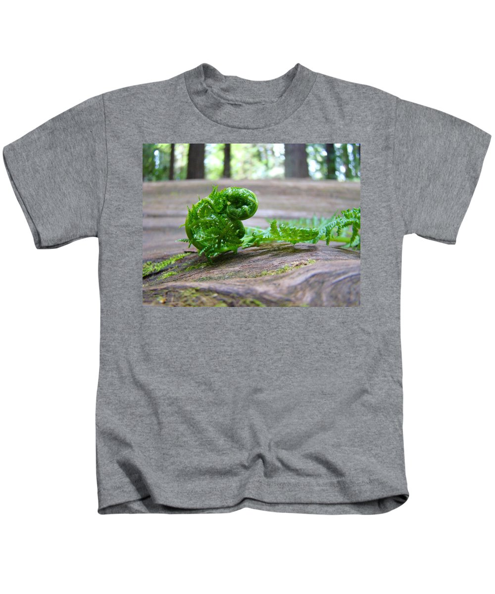 Fern Kids T-Shirt featuring the photograph Fern On Big Redwood Tree Art Prints Baslee Troutman by Baslee Troutman