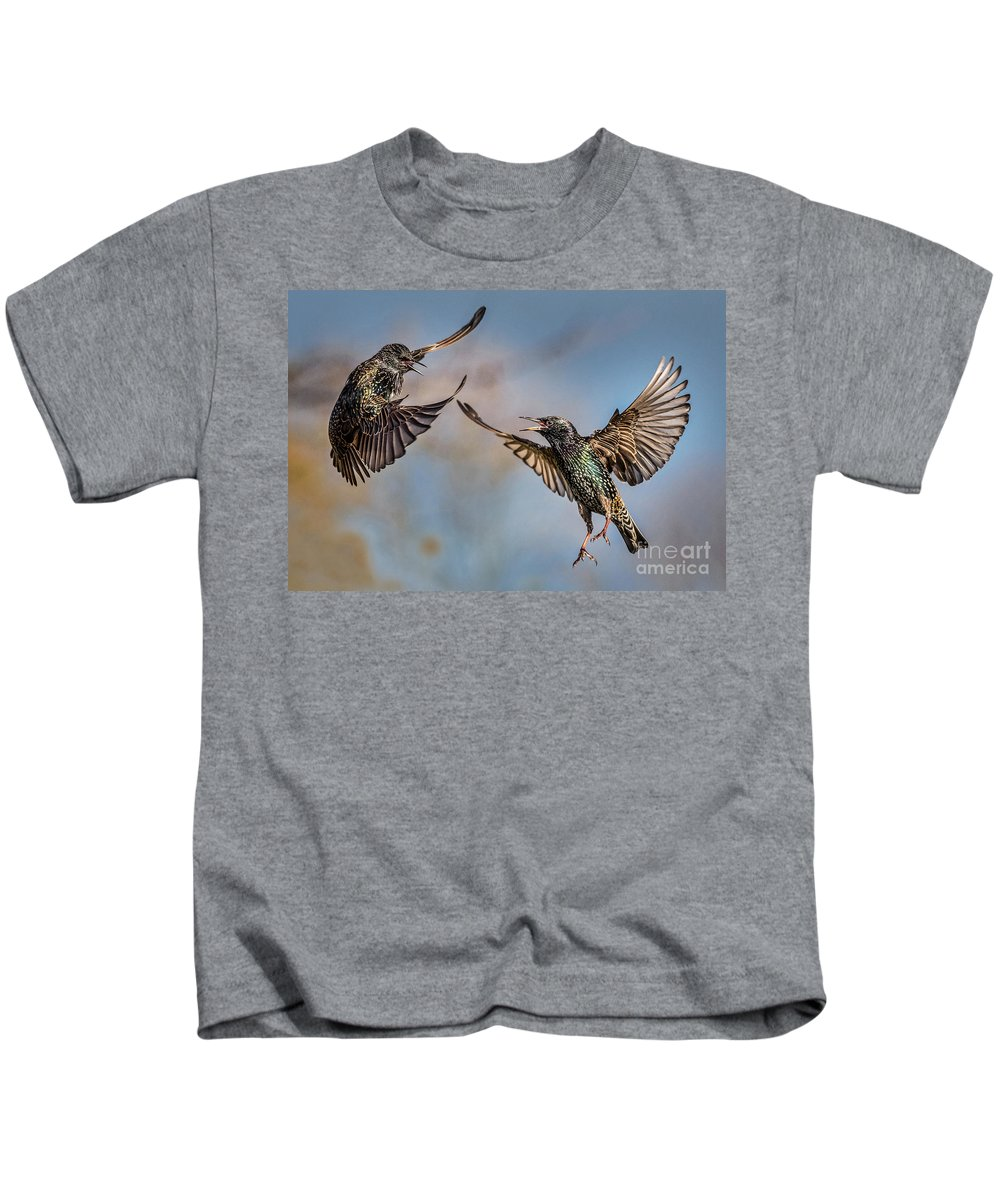 Birds. Starlings. Fighting. Kids T-Shirt featuring the photograph Fighting Starlings by Bill G Smith