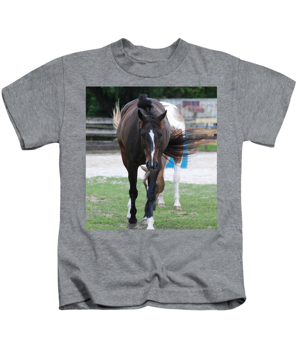 Horses Kids T-Shirt featuring the photograph Flying Circus by Rob Hans