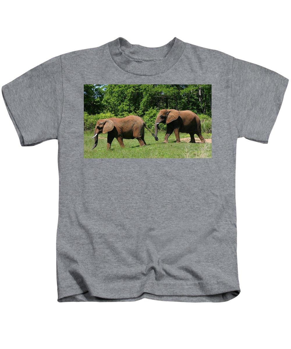 Elephant Kids T-Shirt featuring the photograph Follow The Leader by Kristin Elmquist