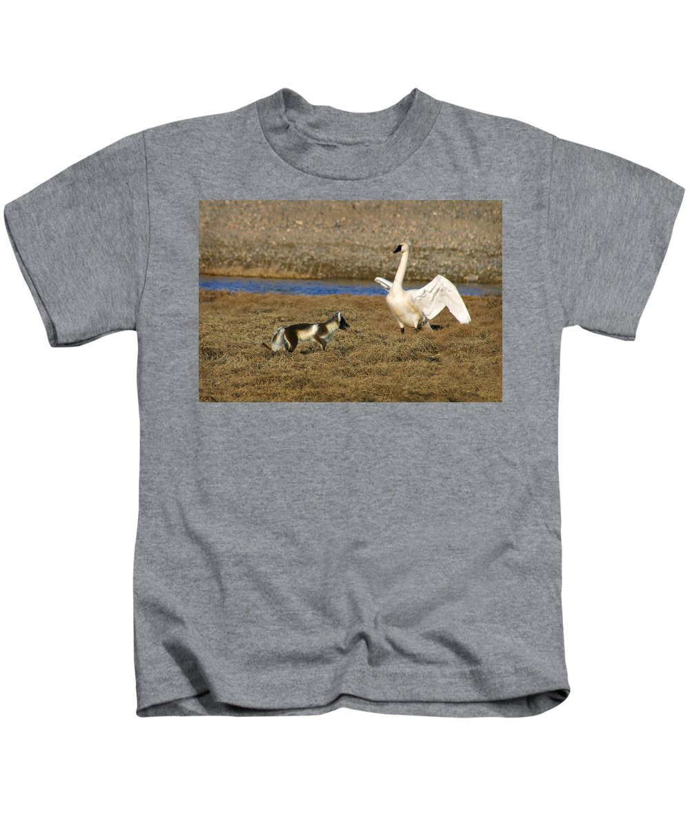 Fox Kids T-Shirt featuring the photograph Fox Vs Swan by Anthony Jones