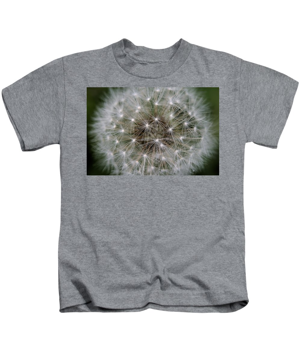 Dandelion Kids T-Shirt featuring the photograph Fuzzy by Angela Rath
