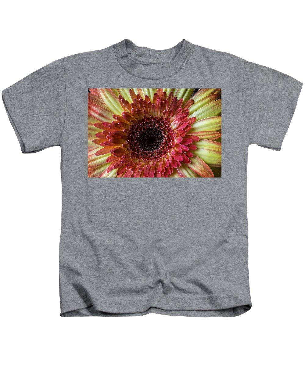 Gerbera Kids T-Shirt featuring the photograph Gerbera Beauty by Garry Gay
