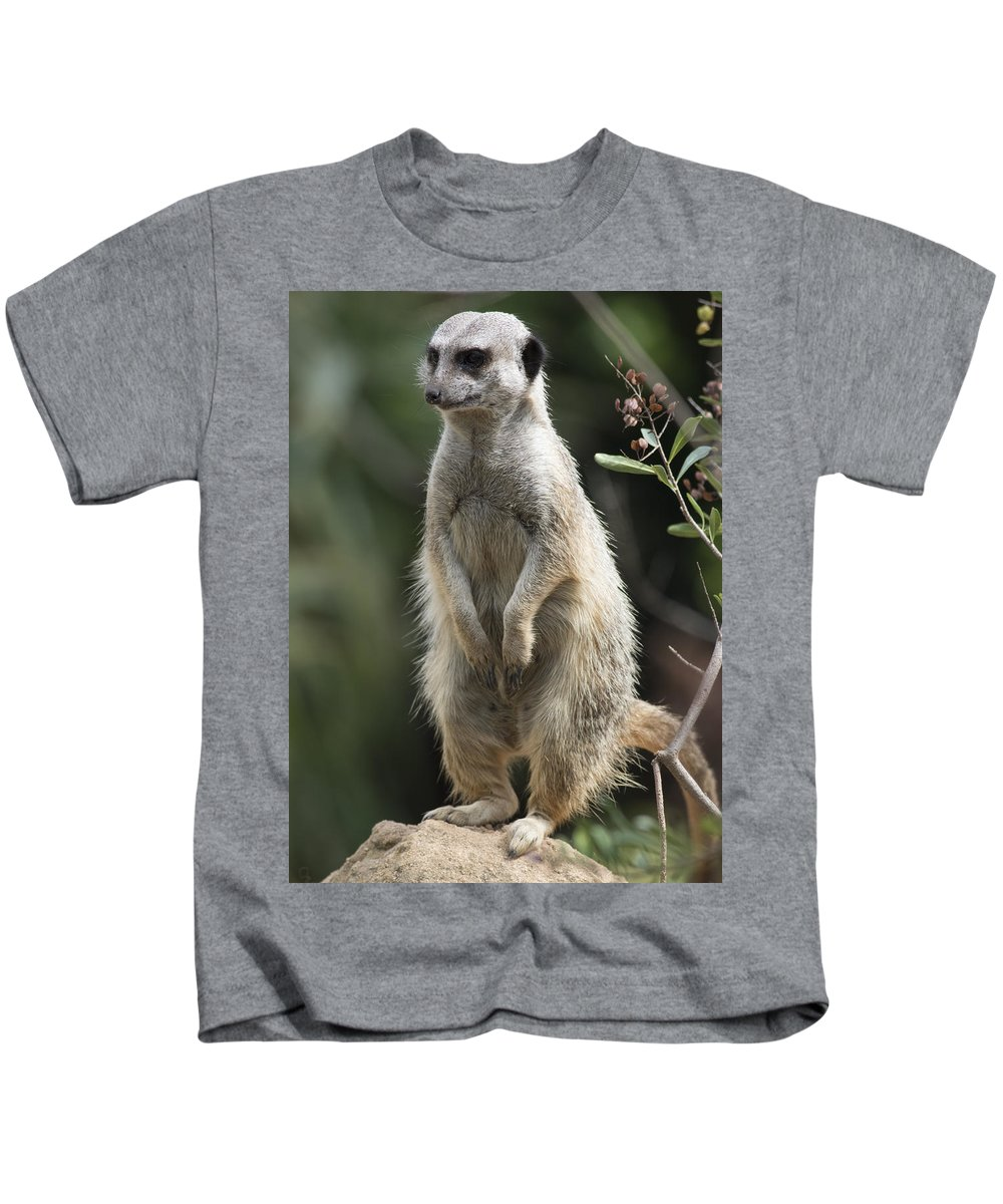 Animal Kids T-Shirt featuring the photograph Getting Up by Masami Iida