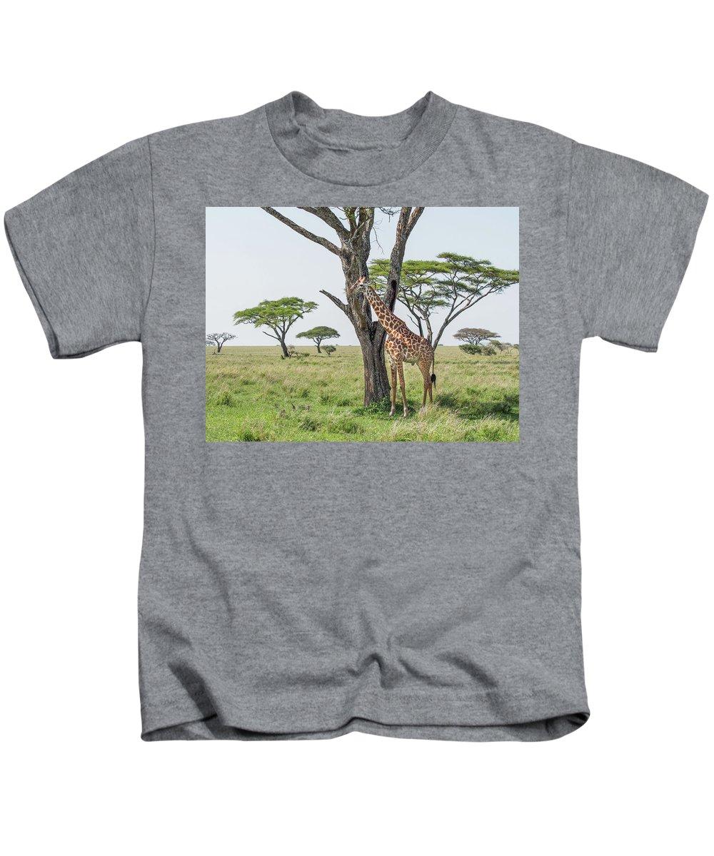 Giraffe Kids T-Shirt featuring the photograph Giraffe 2 by William Morgan