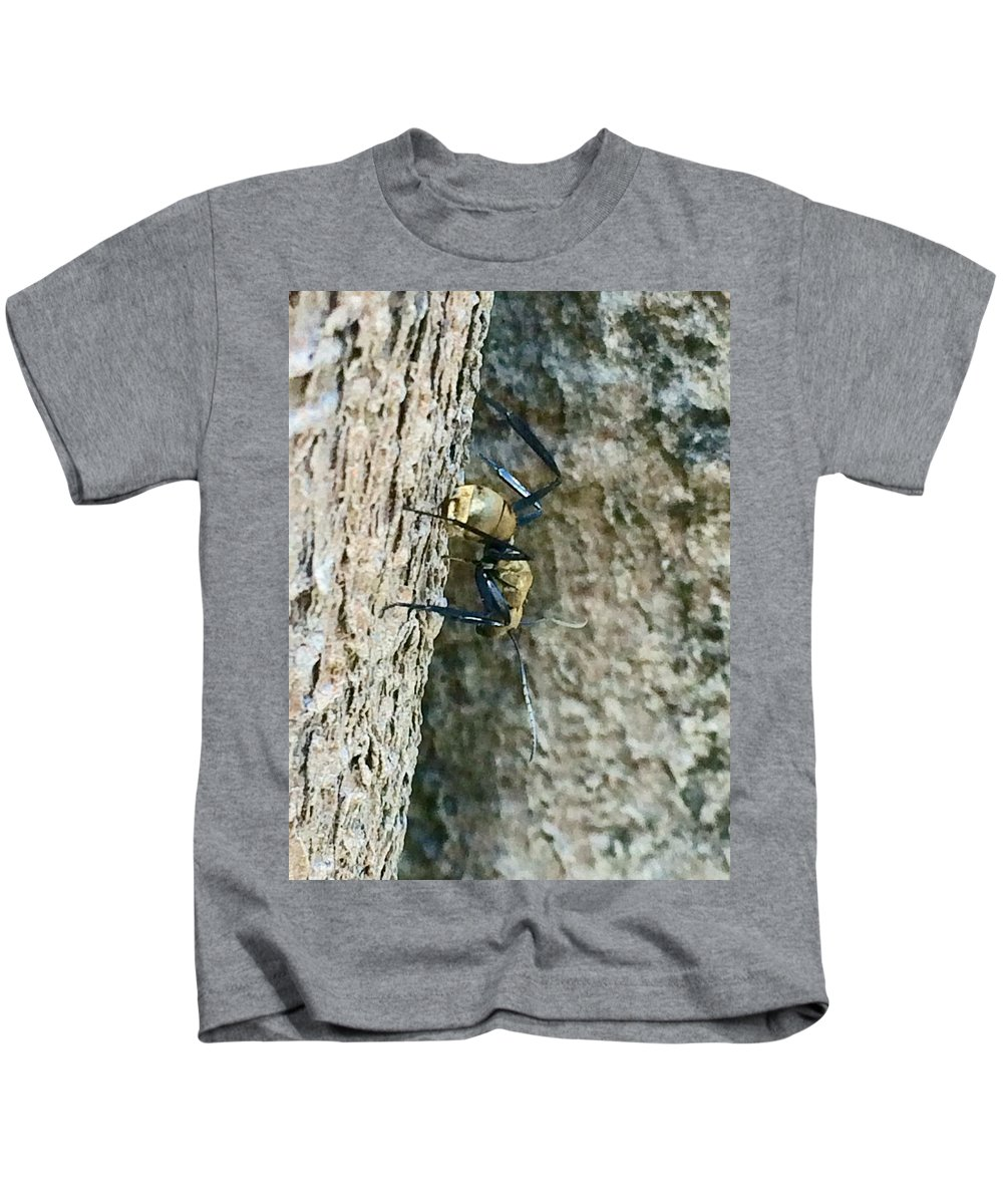 Ant Kids T-Shirt featuring the photograph Golden Carpenter Ant by Natalia Wallwork