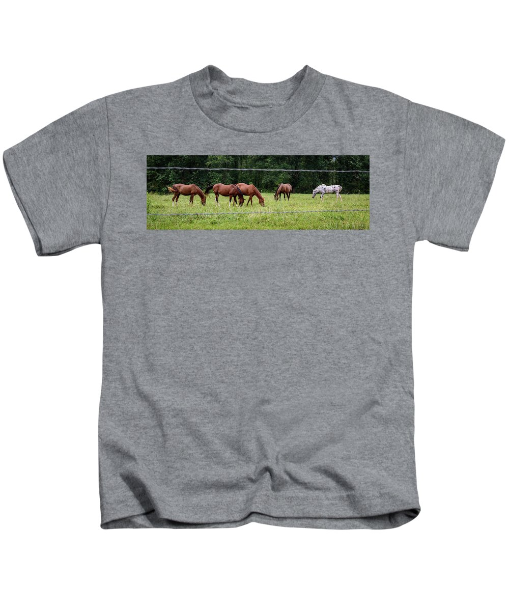 Grazing Horses Kids T-Shirt featuring the photograph Grazing Horses - Cades Cove - Great Smoky Mountains Tennessee by Jon Berghoff