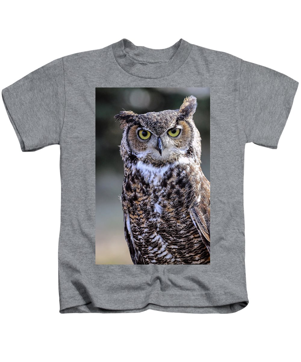 Great Horned Owl Kids T-Shirt featuring the photograph Great Horned Owl IIi by Athena Mckinzie