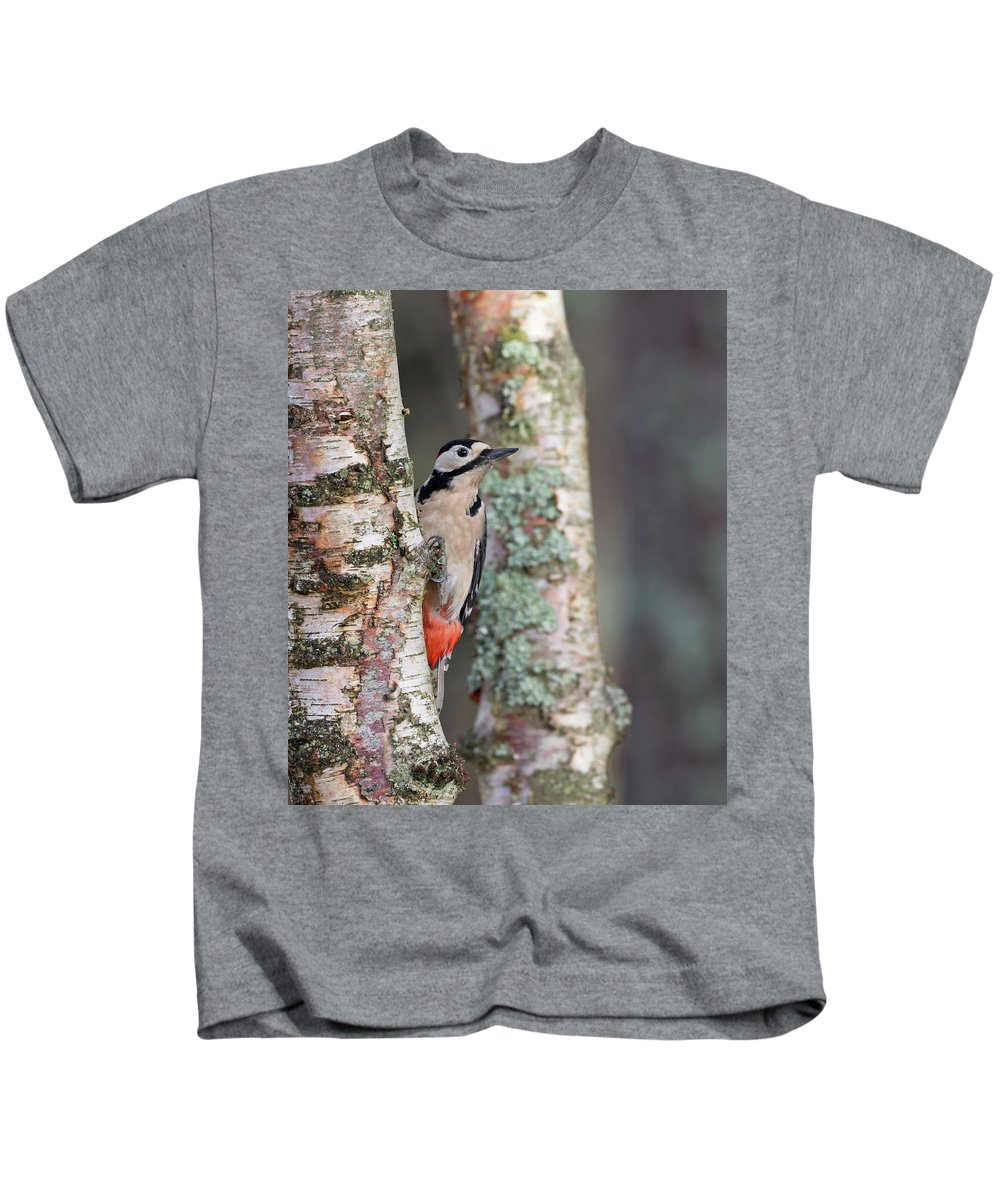 Great Kids T-Shirt featuring the photograph Great Spotted Woodpecker by Peter Walkden