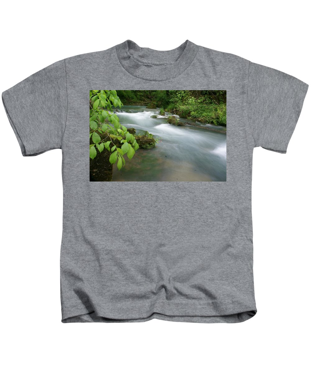 Greer Spring Kids T-Shirt featuring the photograph Greer Spring Branch 2 by Marty Koch