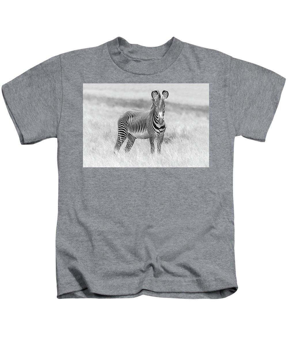 Africa Kids T-Shirt featuring the photograph Grevy Zebra 5953bw by Karen Celella