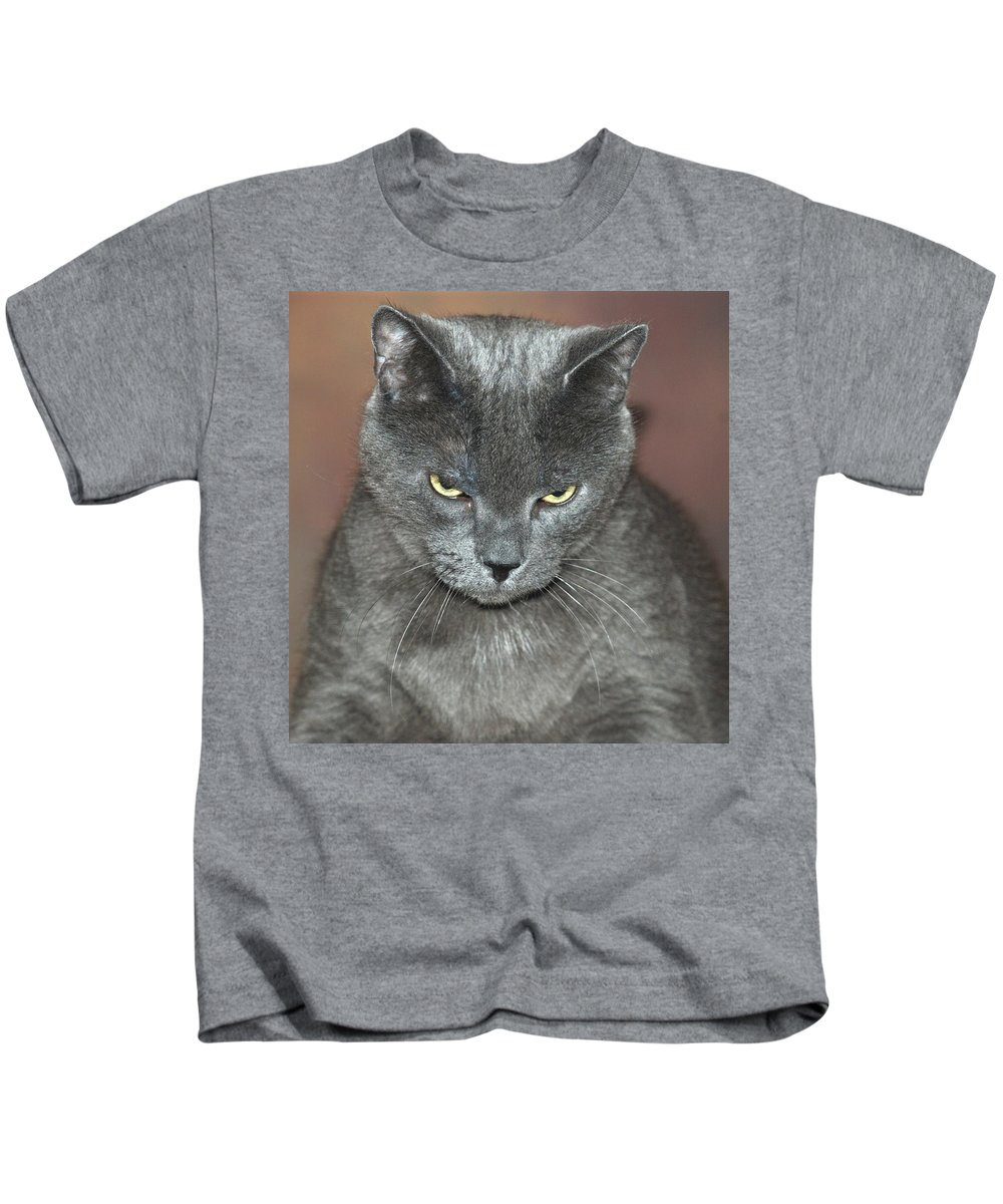 Cat Kids T-Shirt featuring the photograph Grumpy Cat by Richard Bryce and Family