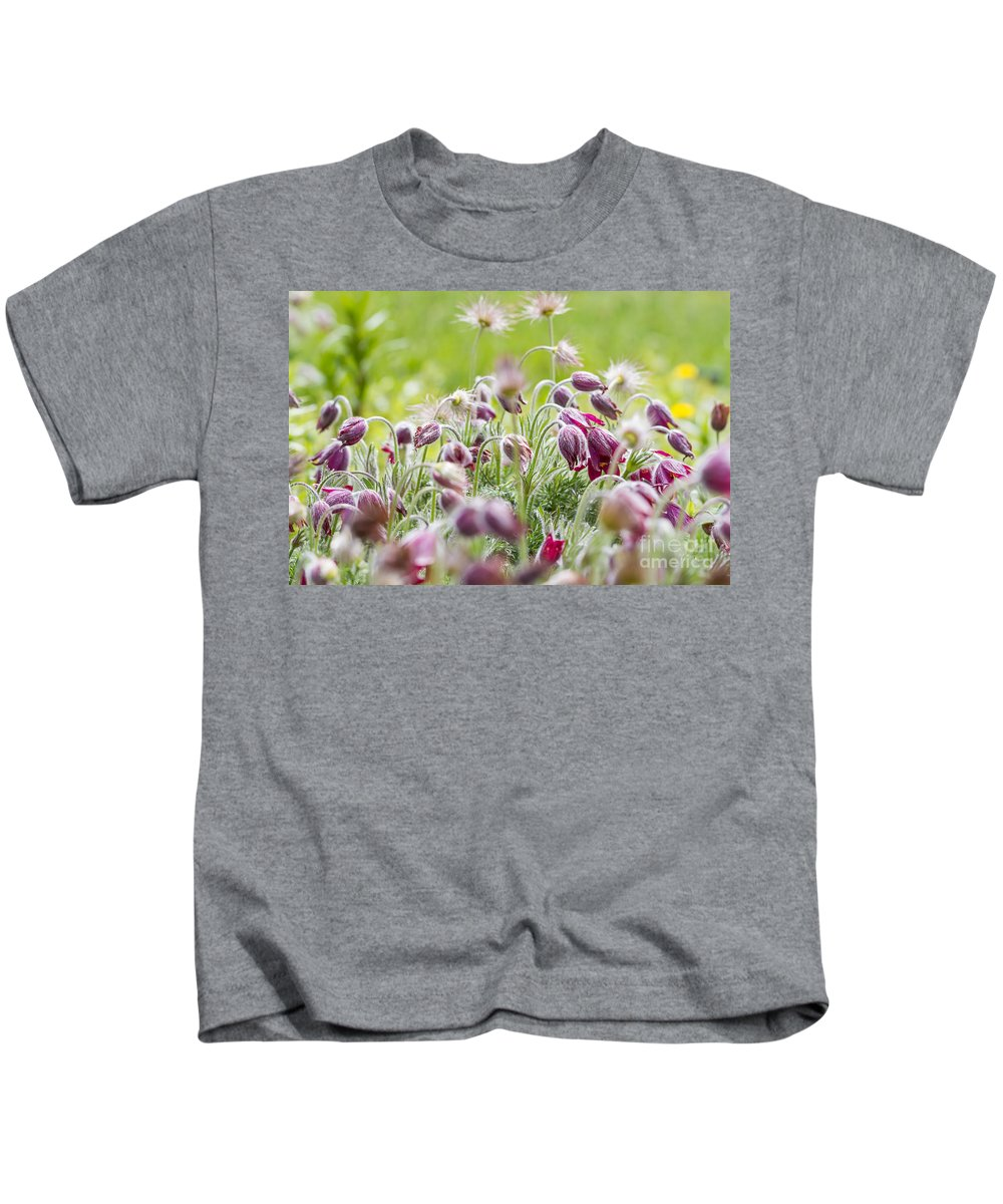 Colorado Kids T-Shirt featuring the photograph Hanging Blooms by Ashley M Conger