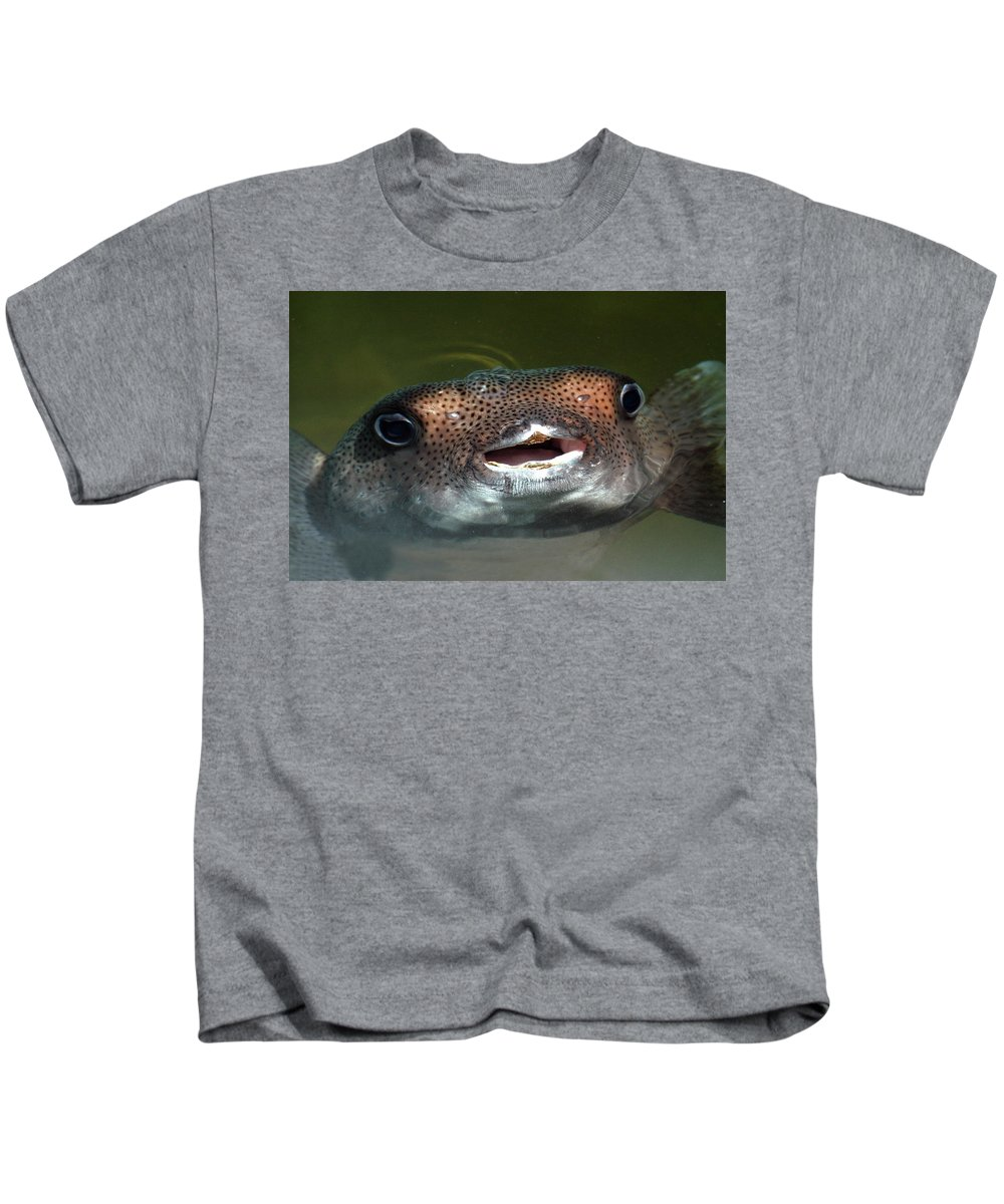 Fish Kids T-Shirt featuring the photograph Happy Fish by Alynne Landers