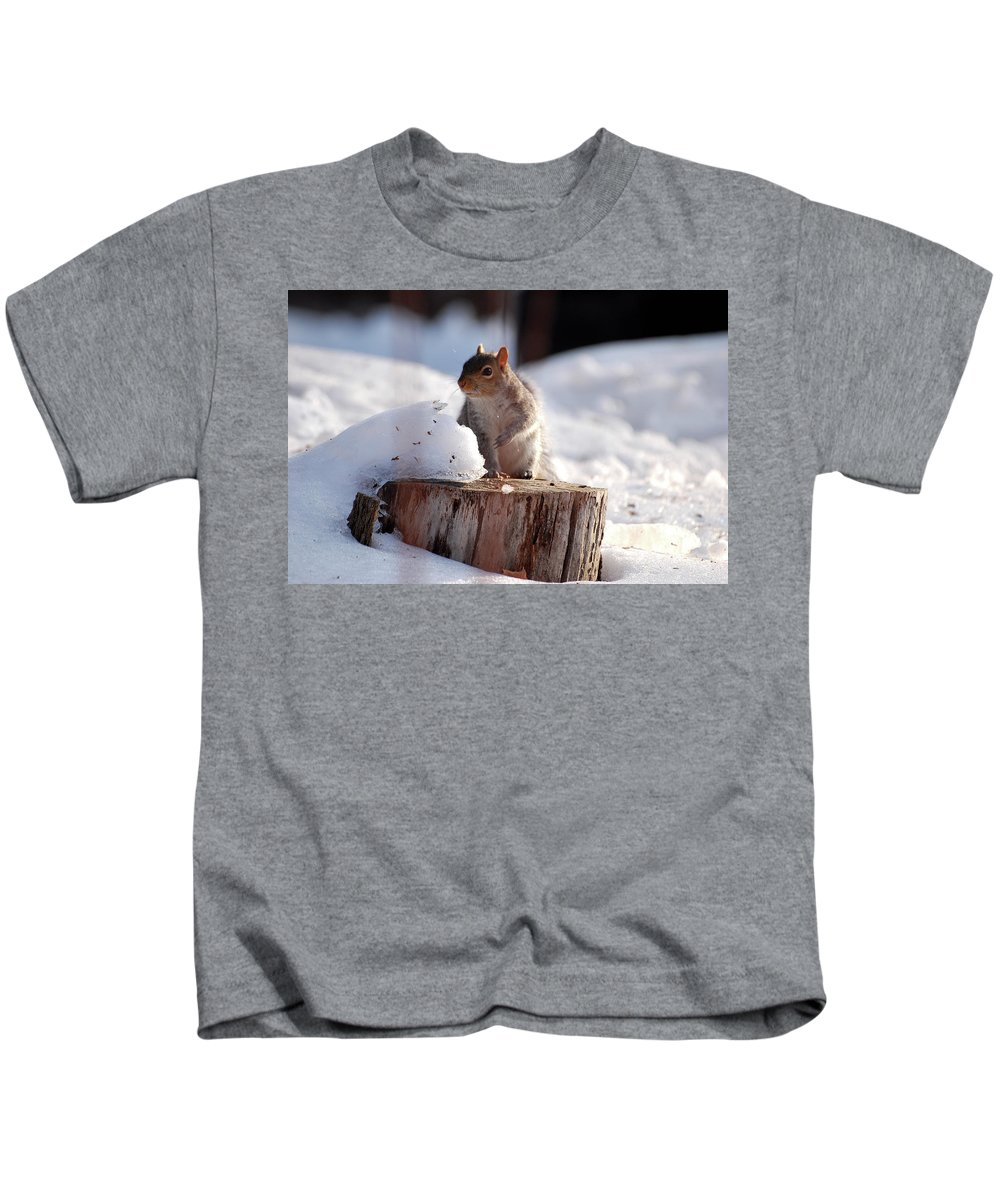 Squirrel Kids T-Shirt featuring the photograph Has Anyone Seen My Nuts by Lori Tambakis