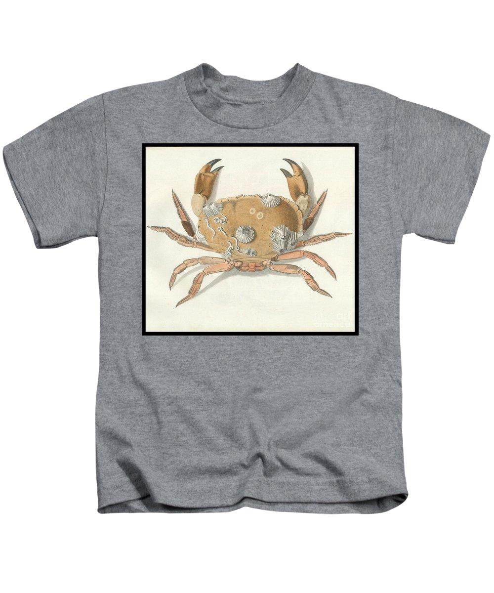 Herbst - Crab Kids T-Shirt featuring the painting Herbst by MotionAge Designs