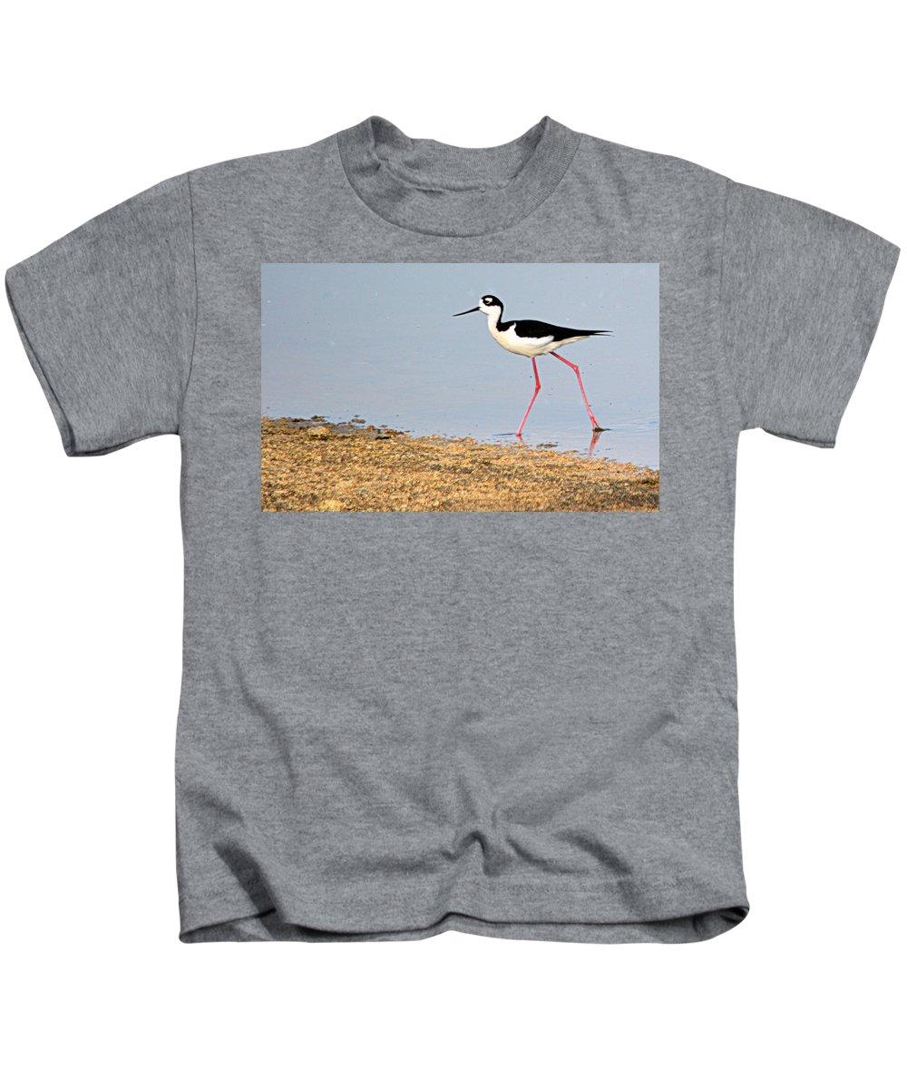Birds Kids T-Shirt featuring the photograph Hi-stepper by AJ Schibig