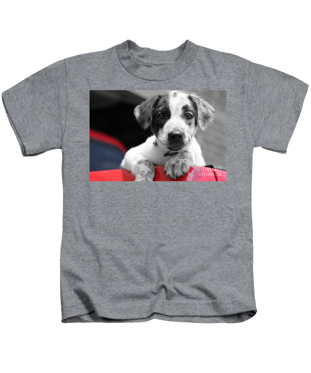 Dogs Kids T-Shirt featuring the photograph Hmmm by Amanda Barcon