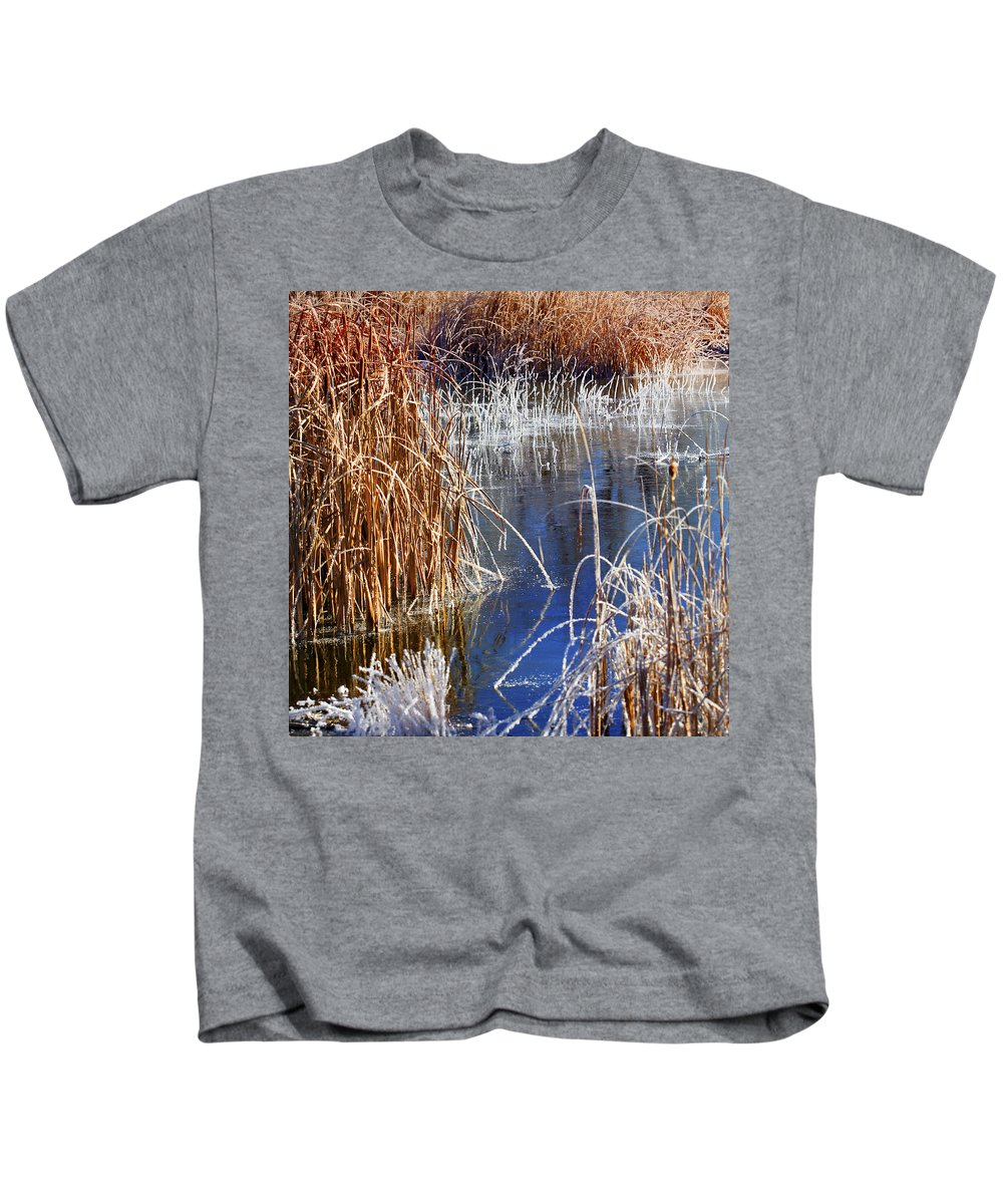 Hoar Frost Kids T-Shirt featuring the photograph Hoar Frost On Reeds by Marilyn Hunt