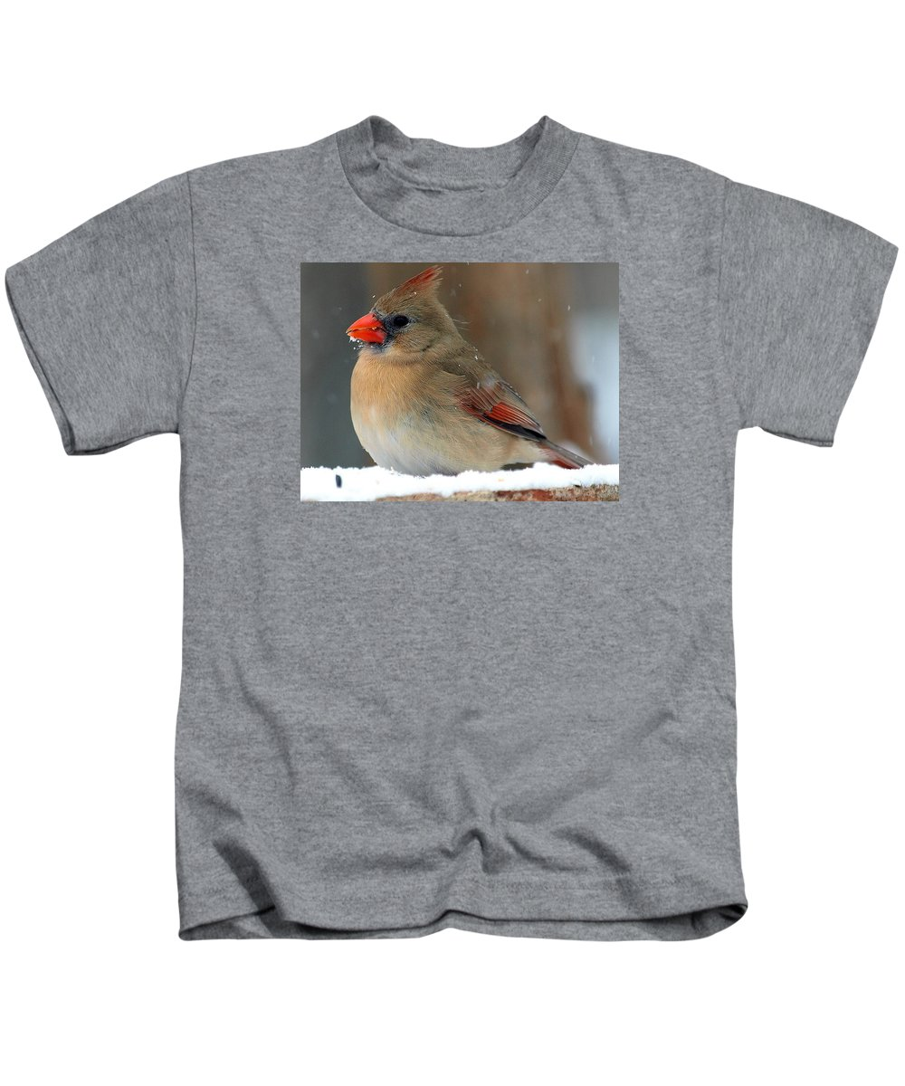 Cardinalis Cardinalis; Cardinal; Northern Cardinal; Red; Redbird; Garland Texas Kids T-Shirt featuring the photograph I Just Can't Resist The Beauty Of A Cardinal In The Snow by Kala King