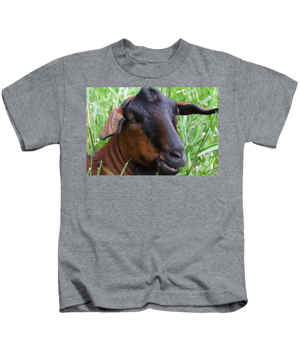 Goat Kids T-Shirt featuring the photograph I Just Got Coiffed by Mary Deal