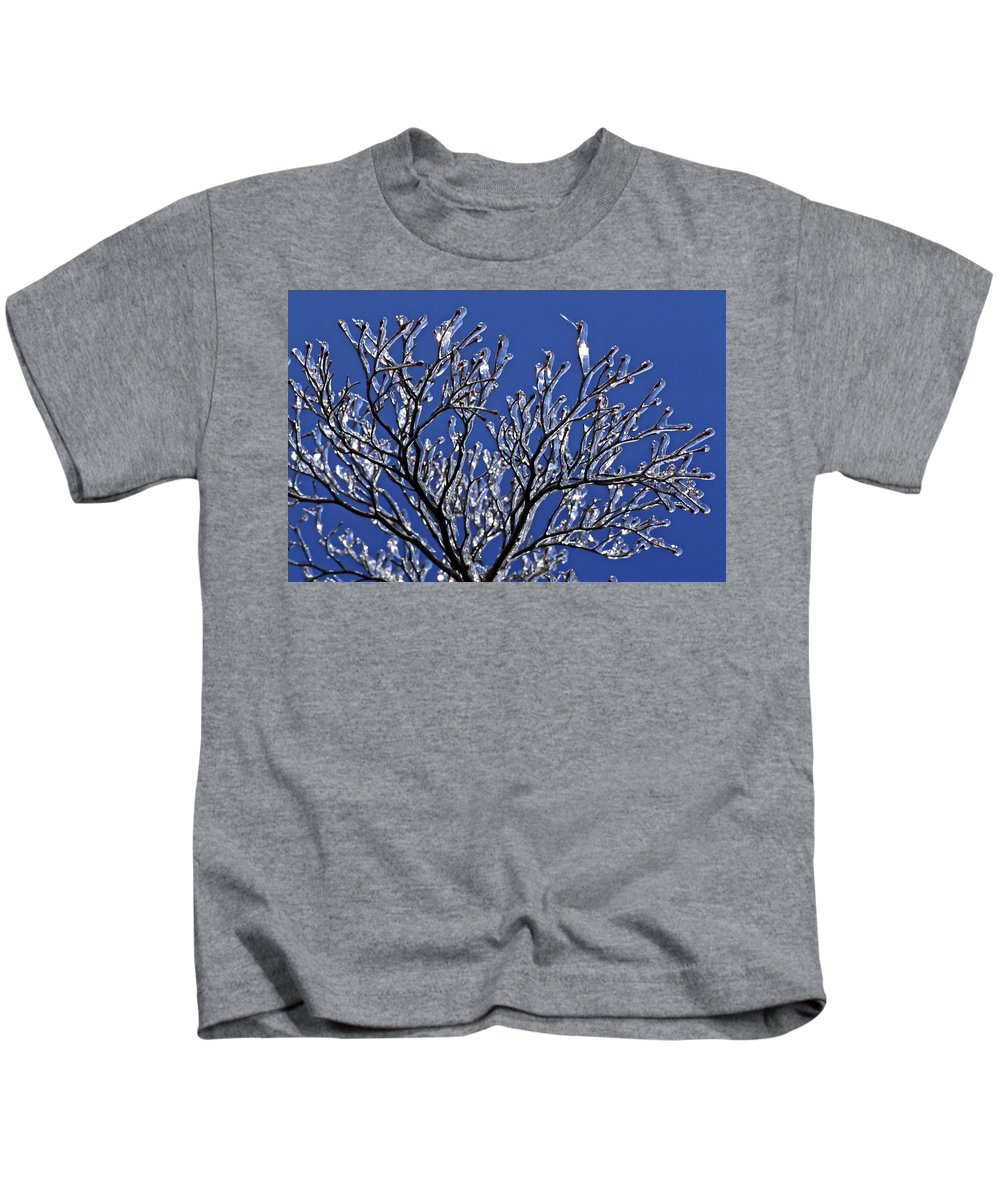 Bare Tree Branches Ice Encrusted Kids T-Shirt featuring the photograph Icey Sparkle by Sally Weigand