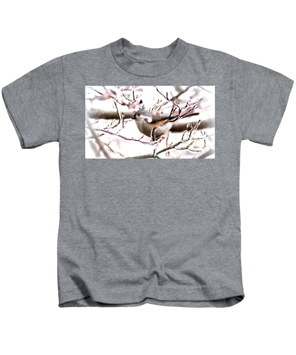 Tufted Titmouse Kids T-Shirt featuring the photograph Img_0001 - Tufted Titmouse by Travis Truelove