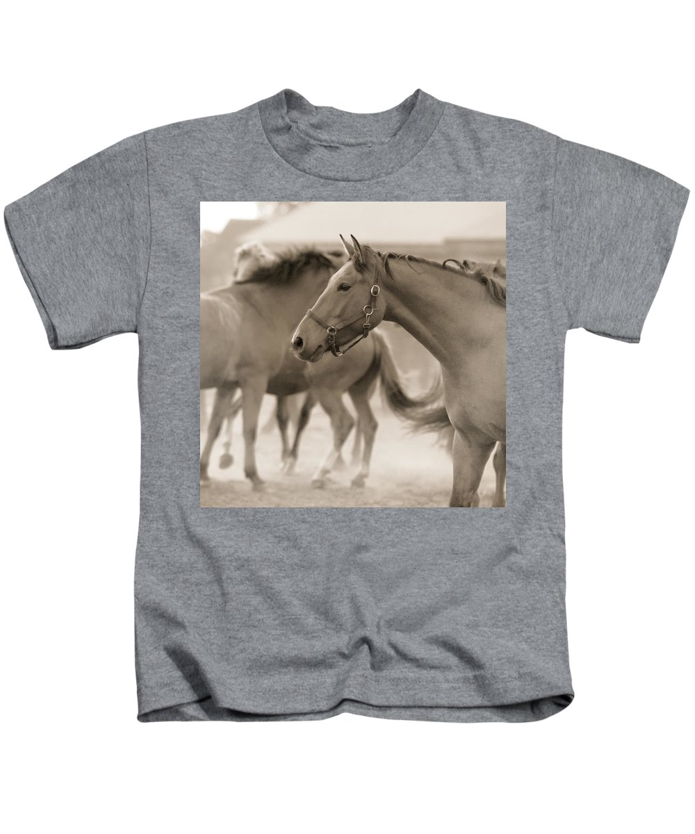 Horses Kids T-Shirt featuring the photograph In The Dust by Angel Ciesniarska