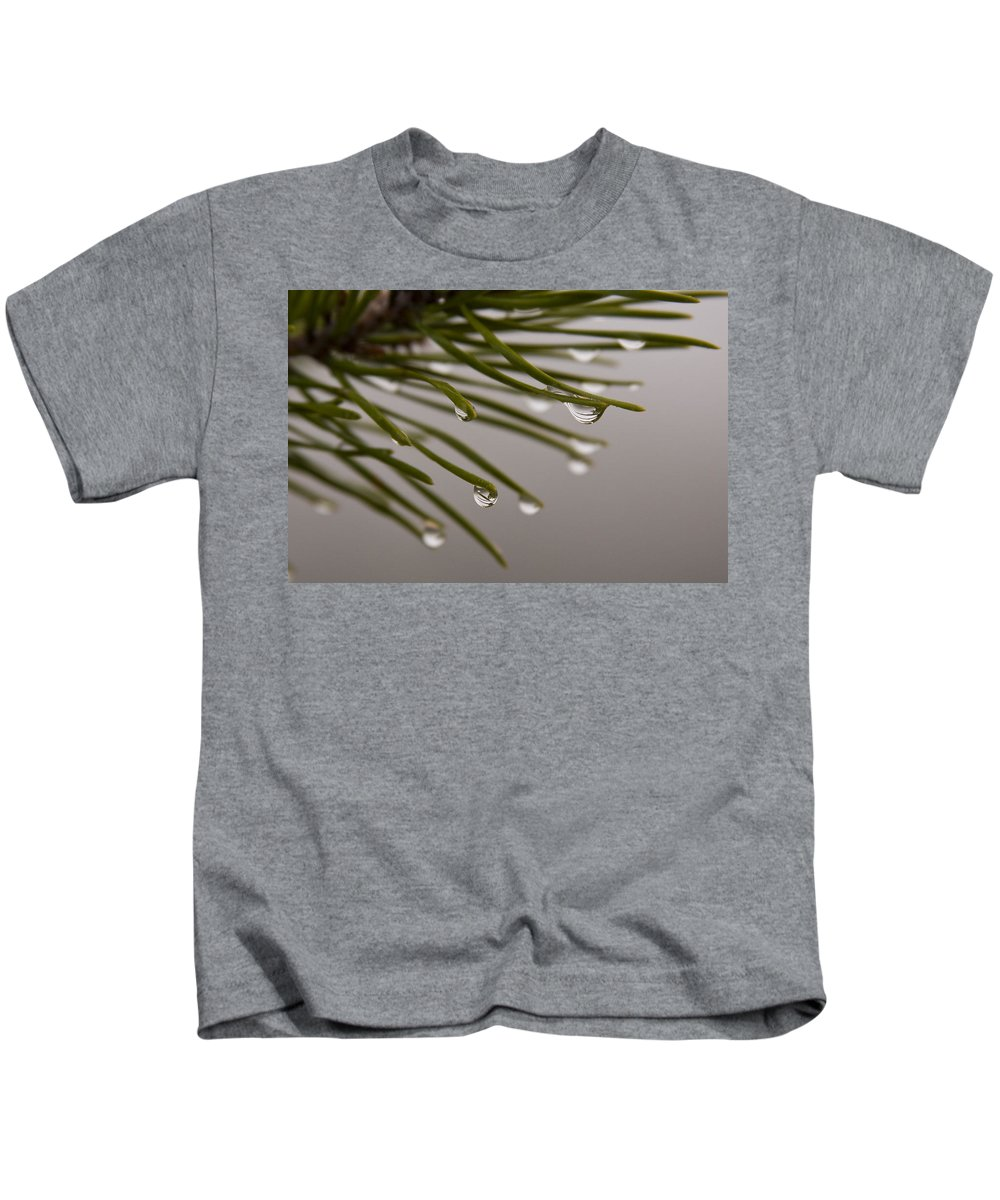 Pine Tree Needle Drop Droplet Reflection Rain Green Fog Foggy Nature Outdoors Hike Kids T-Shirt featuring the photograph In The Rain by Andrei Shliakhau