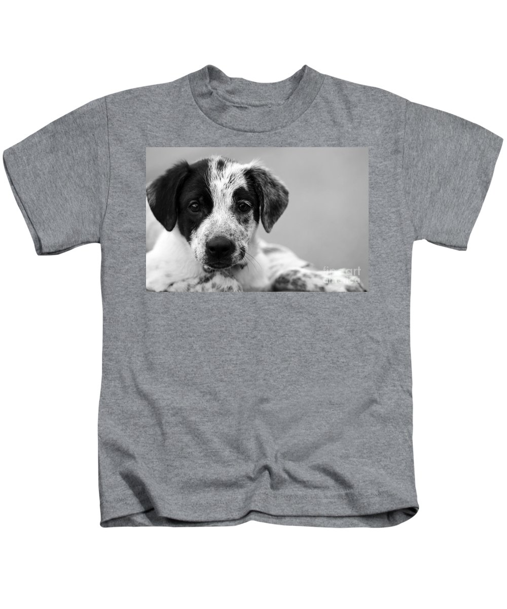 Dog Kids T-Shirt featuring the photograph Keep Me by Amanda Barcon