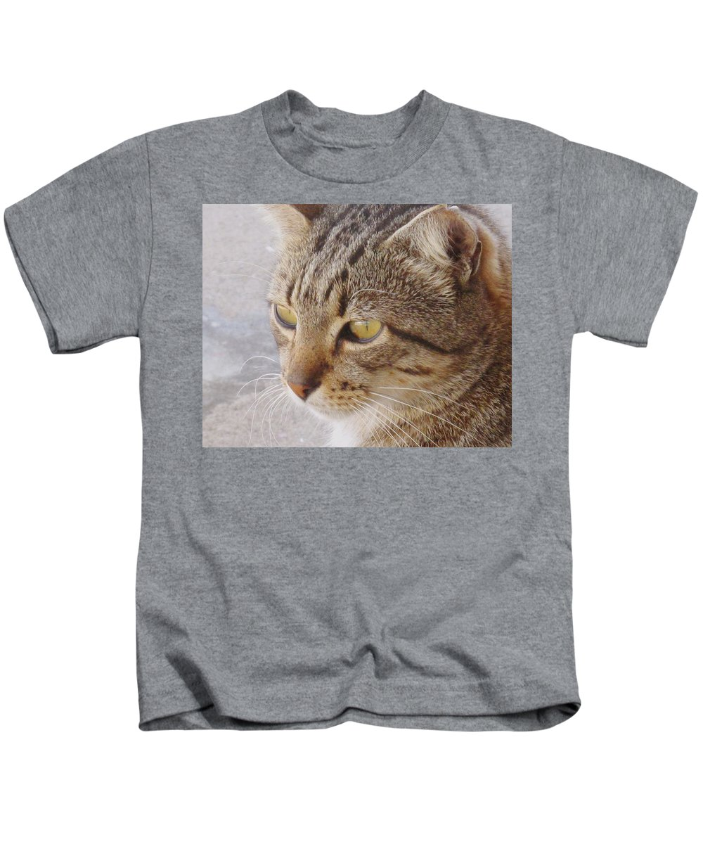 Cat Kids T-Shirt featuring the photograph King Cat by Ian MacDonald